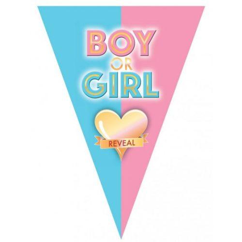 Fiú vagy lány  - zászlófüzér babaváró partyra